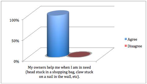 Pet Satisfaction Surveys (2/6)