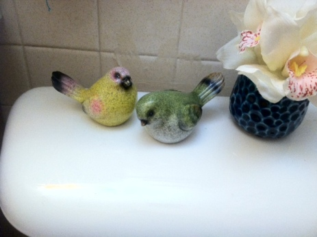 ToiletBirds